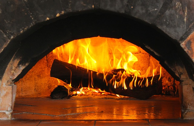 Камин или печь для дома