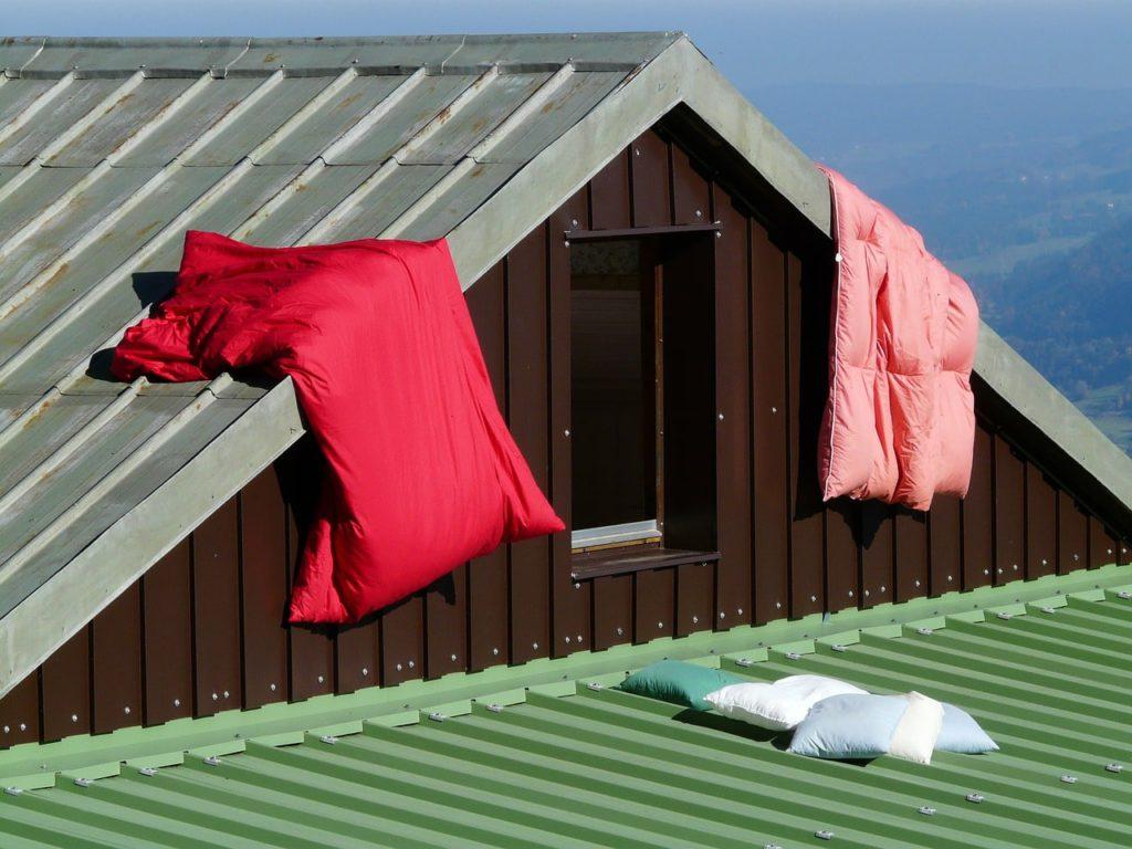 Как предотвратить появление плесени зимой на даче