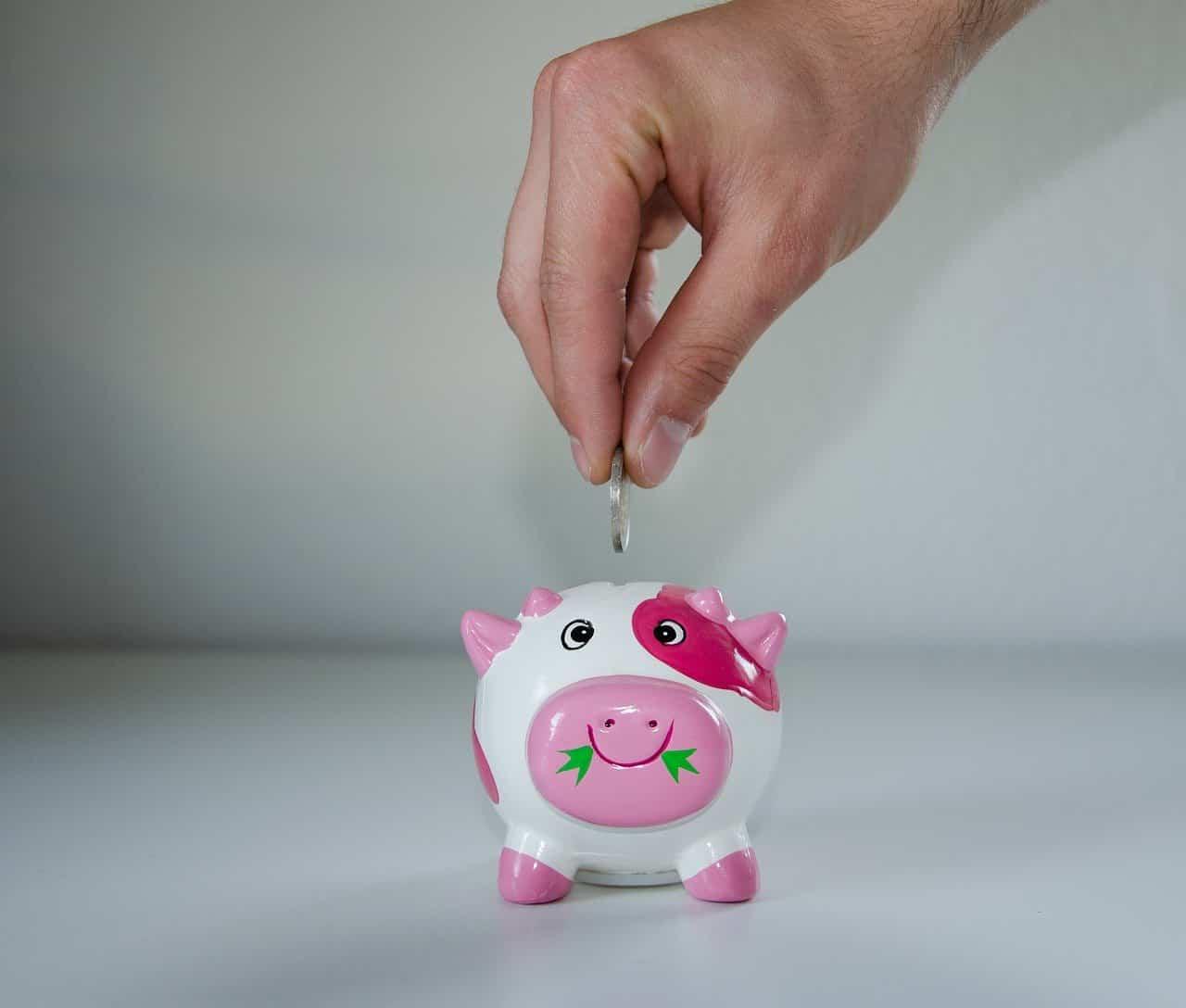 Как сэкономить на отоплении дома и купить дымоход выгодно